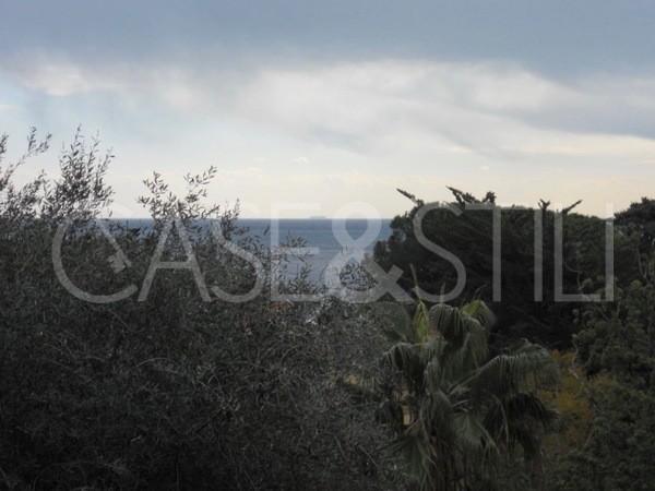 vista_2